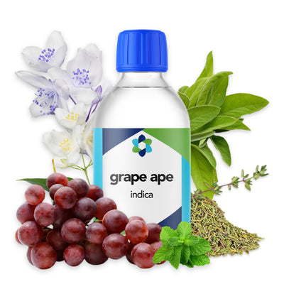 grape-ape-indica-terpene