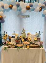 Peter Rabbit Petite Dessert Table (For 20-30 pax)