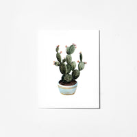 Flowering Cactus - Greeting Card