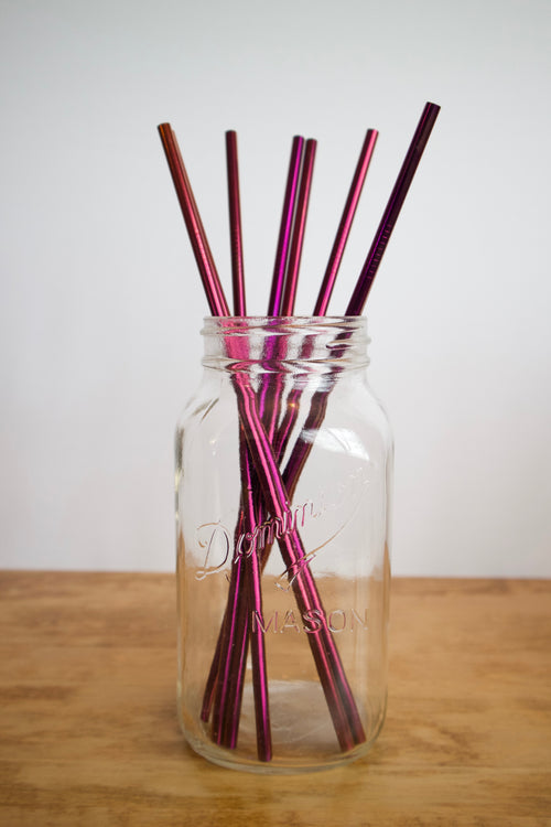Stainless Steel Straw - Long / Purple / Straight