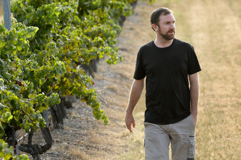 Mount Pleasant Ignites A Spark In Chief Winemaker Role