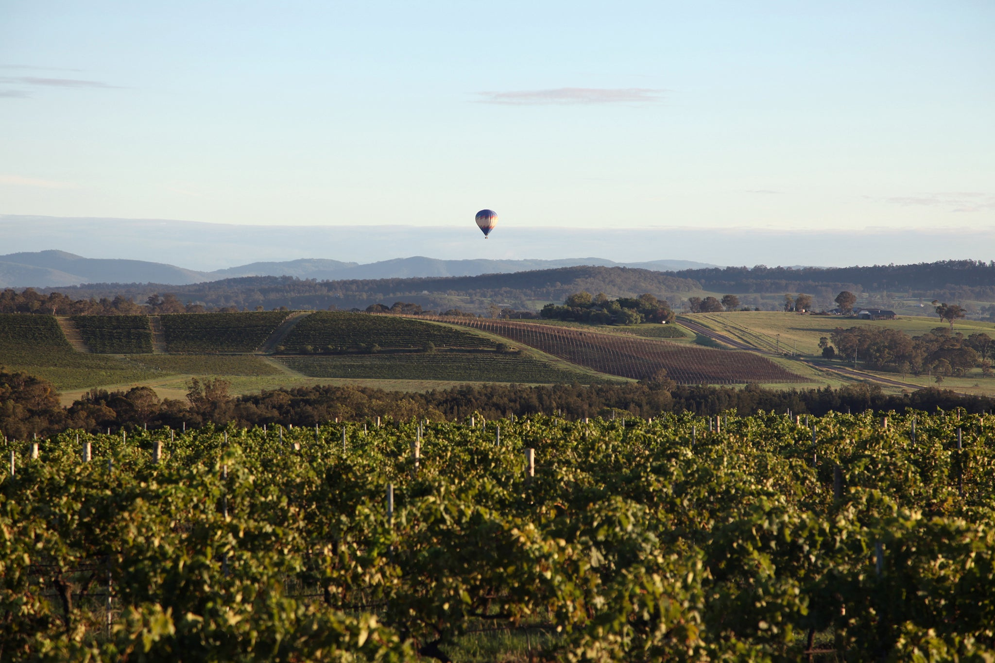 10 Things to do in the Hunter Valley