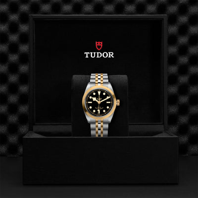TUDOR Black Bay 36 S&G