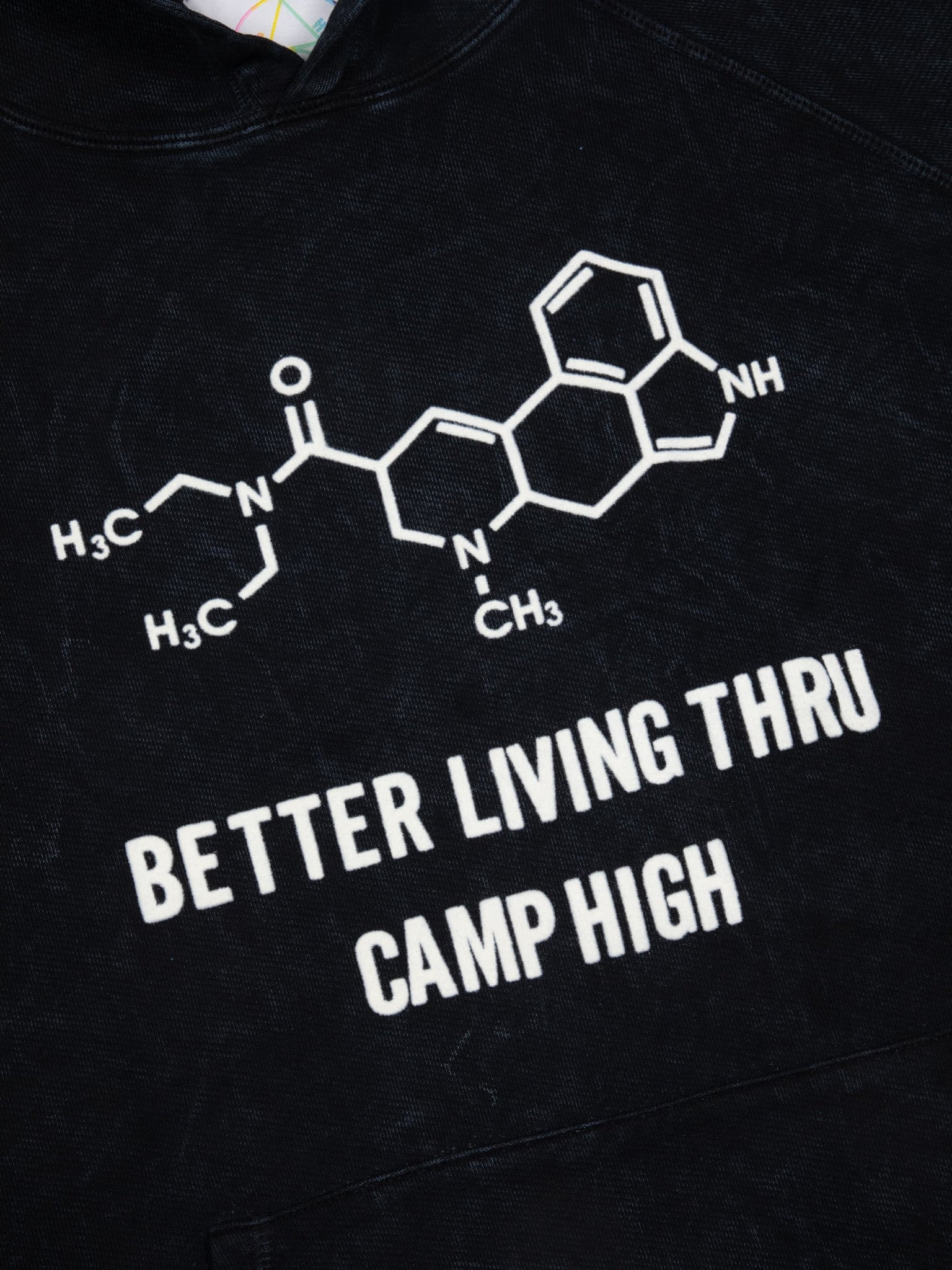 Camp High Better Living Thru Camp High Hoody
