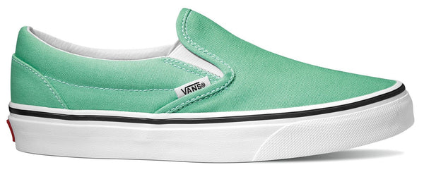 Vans Slip-On Skate Shoes