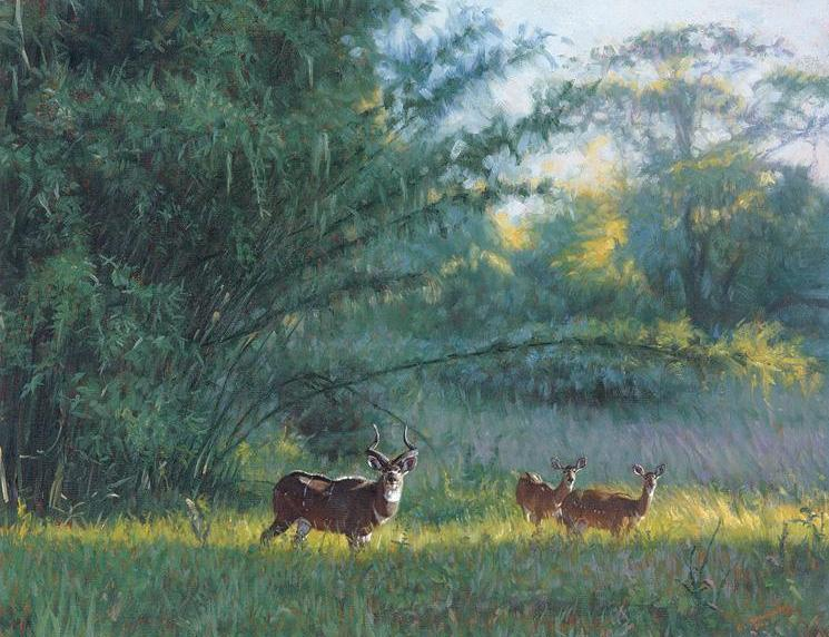 John Banovich - Mt. Nyala and Bamboo
