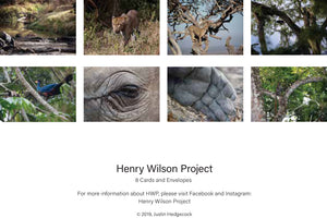 Henry Wilson Project-Wildlife Greeting Cards