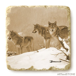 Banovich Wild Accents-Wolves Collection - Coasters
