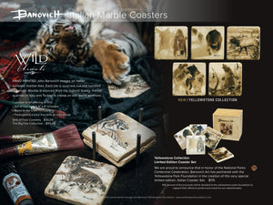 Banovich Wild Accents-Endangered Species Collection-Coasters