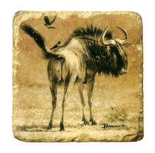Banovich Wild Accents-African Ungulates II-Coasters