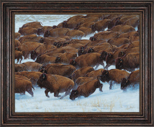John Banovich - Buffalo Run