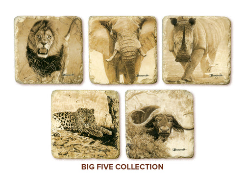 Banovich Wild Accents-Big Five-Coasters
