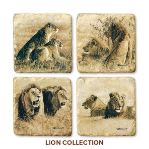 Banovich Wild Accents-Lion Coasters