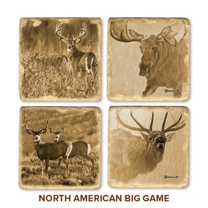 Banovich Wild Accents-North American Big Game-Coasters