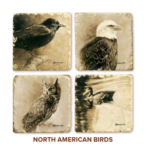 Banovich Wild Accents-North American Birds-Coasters