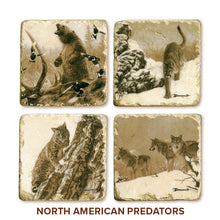Banovich Wild Accents-North American Predator Collection-Coasters