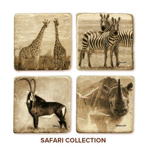 Banovich Wild Accents-Safari Collection-Coasters