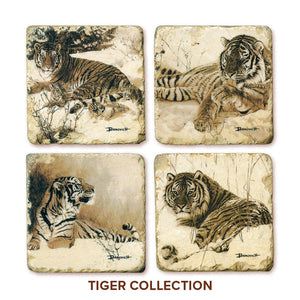 Banovich Wild Accents-Tiger Collection-Coasters