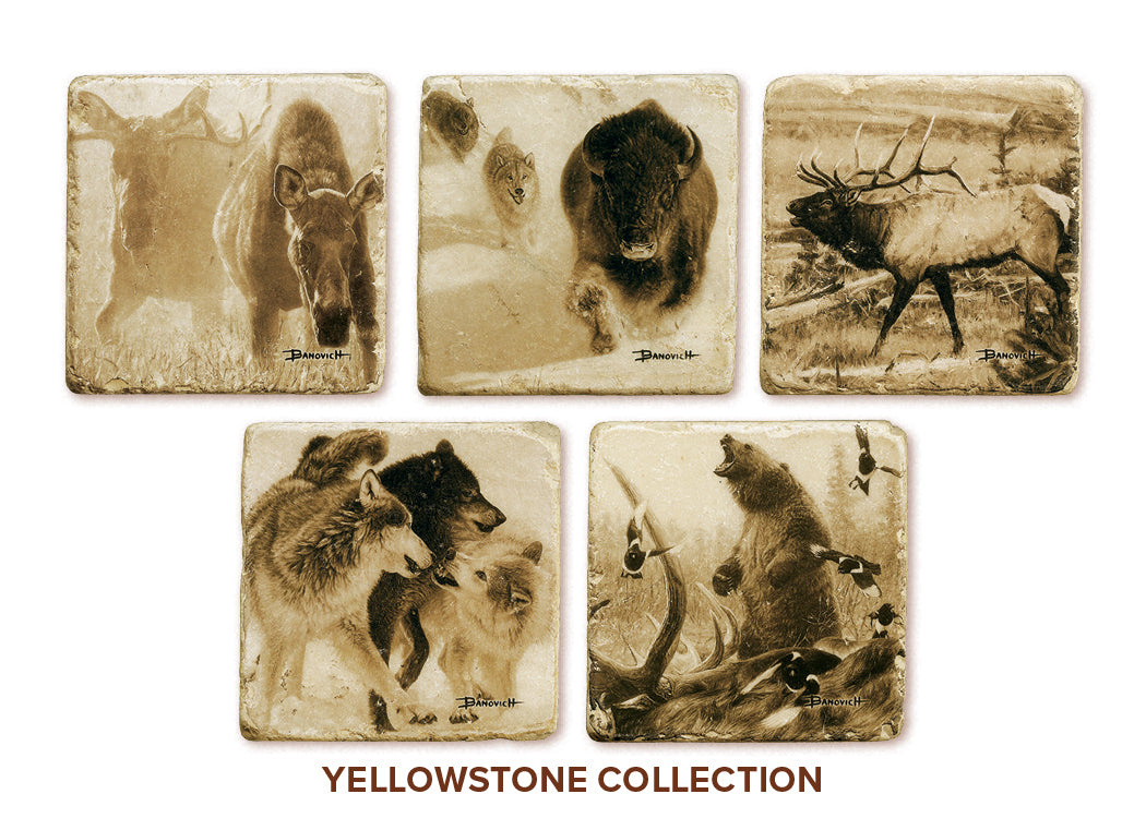 Banovich Wild Accents-Yellowstone Collection-Coasters