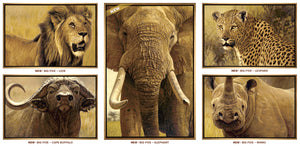 John Banovich - The Big Five Collection- Rhino