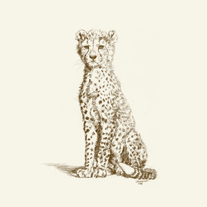 John Banovich - WILD CHILD-Cheetah (Canvas Zawadi Edition)