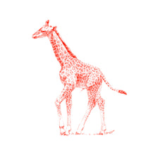 John Banovich - WILD CHILD-Giraffe (Canvas Zawadi Edition)