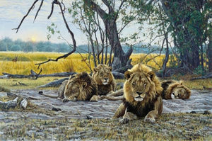 King of Beasts - Banovich Art Notecards