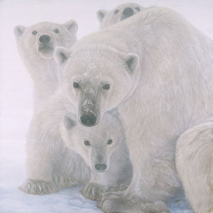 White Bear - Banovich Art Notecards
