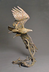 Stefan Savides - Top Gun - Table Top (Eagle) - Limited Edition Sculpture