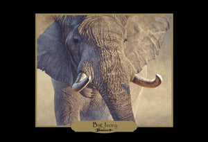 Elephants of Africa - Banovich Art Notecards