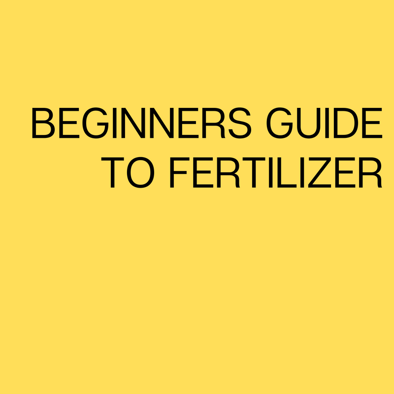 Beginners Guide to Fertilizer