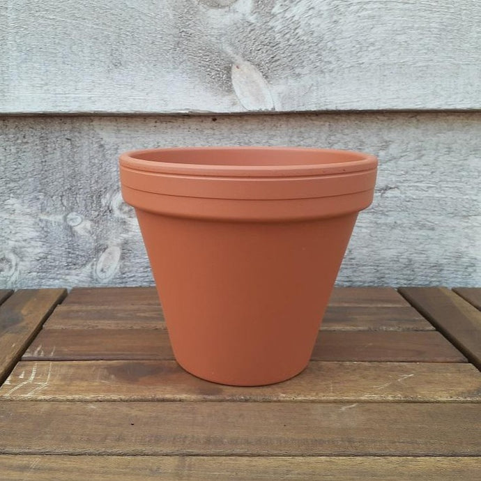Lined Edge Terracotta