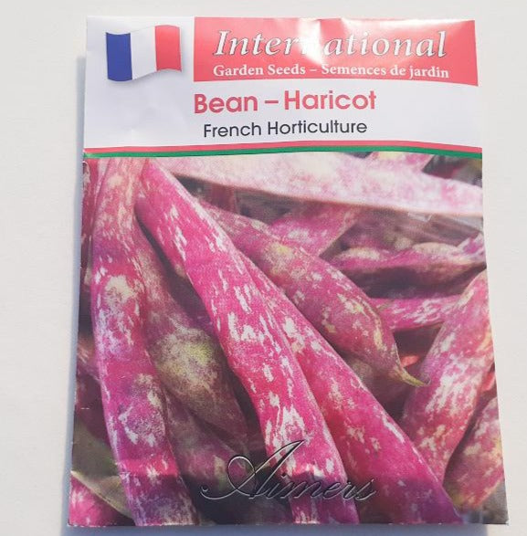 Bean 'French Horticulture'