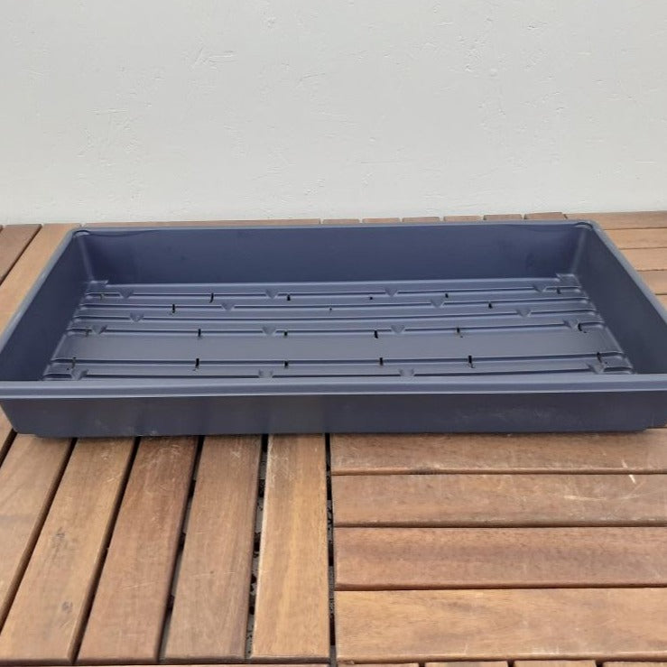 Plastic Tray with Holes