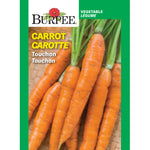 Carrot 'Touchon'