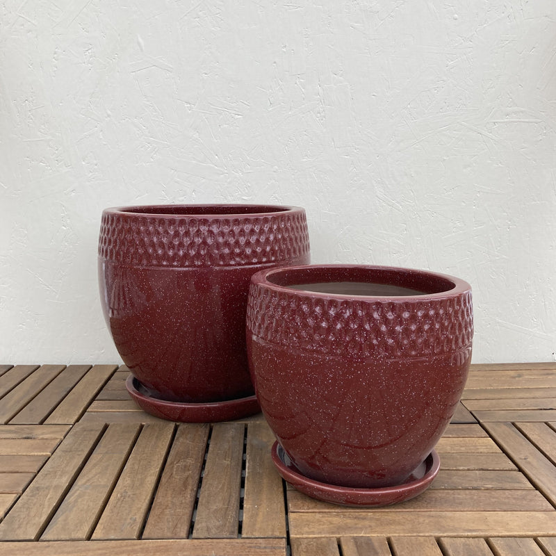 Red Dotted Rim Planter