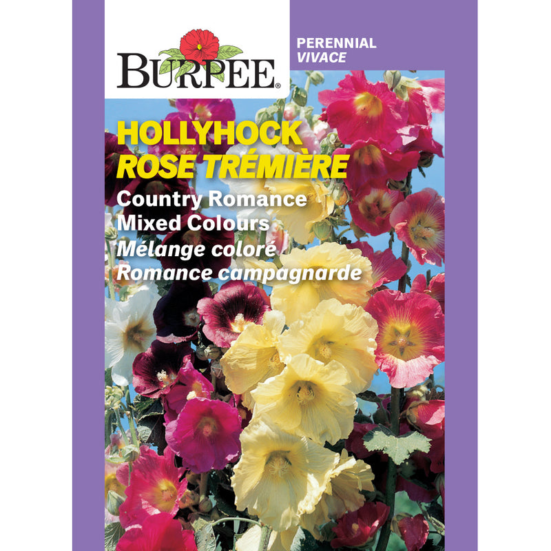 Hollyhock 'Country Romance Mixed' (Heirloom)