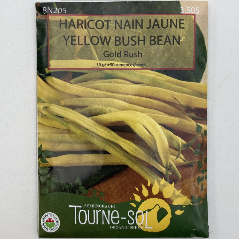 Yellow Bush Bean 'Gold Rush'