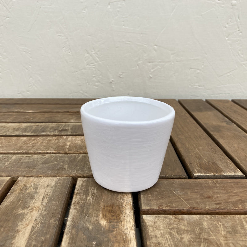 Tea Cup Planter White