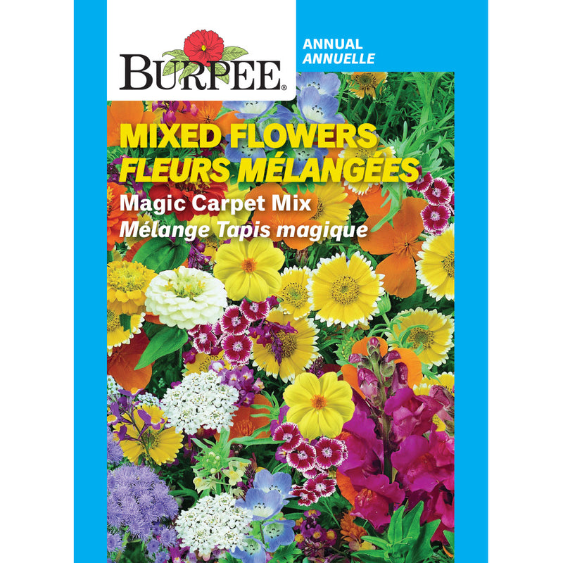 Mixed Flowers 'Magic Carpet Mix'