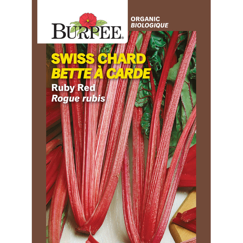 Swiss Chard 'Ruby Red'