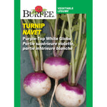 Turnip 'Purple-Top White Globe'