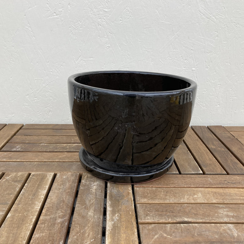 Black Egg Planter