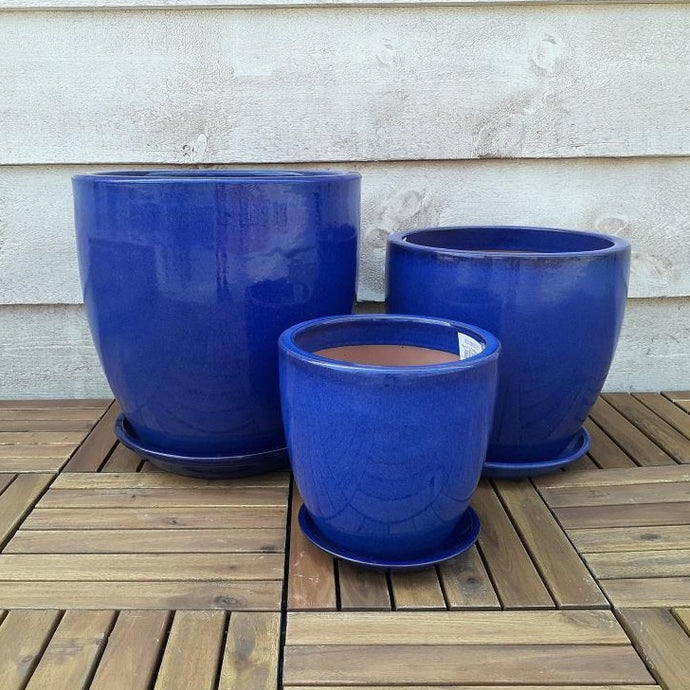 Egg Planter Blue