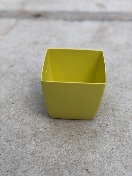 Citron Kyle Planter, 7.5""
