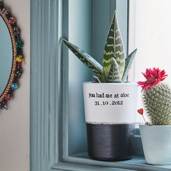 Personalised Cactus Plant - Gifts For Nurses
