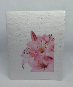 A70 SEED PAPER CARD