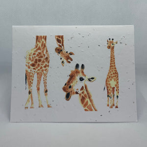 B60 SEED PAPER CARD