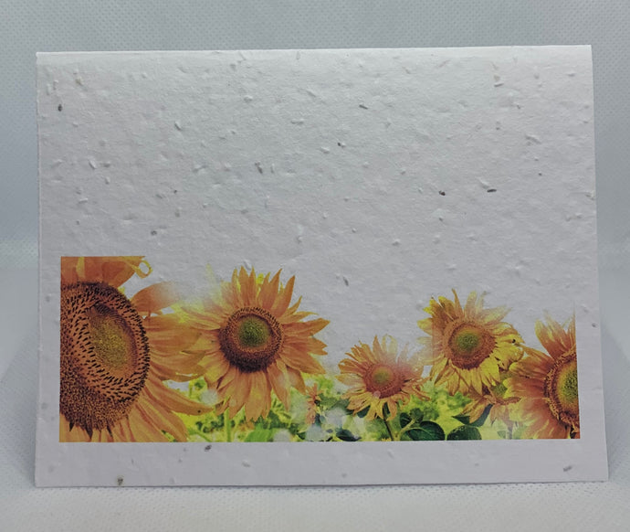 A4 SEED PAPER CARD