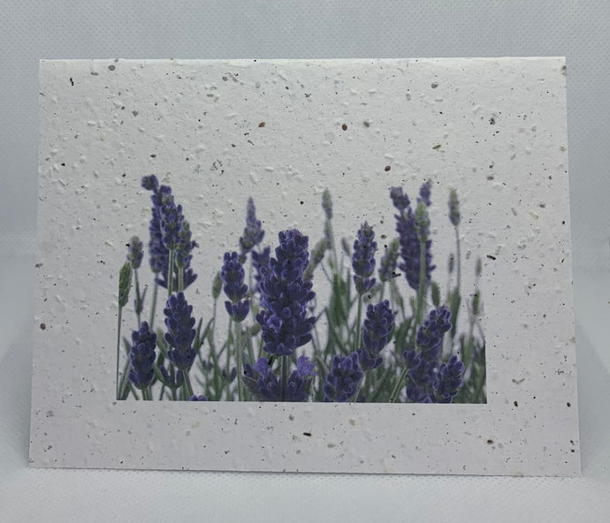 SEED PAPER CARD J70